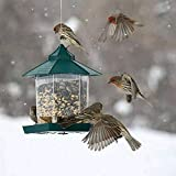 TopHGC Mangiatoia per Uccelli, Mangiatoia per Uccelli Selvatica appesa Contenitore per Alimenti per Uccelli Allaperto Forniture per Animali Domestici Impermeabili