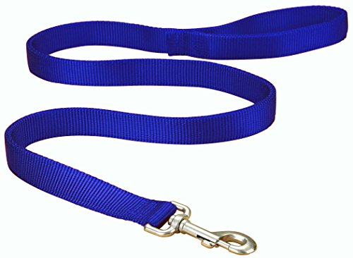 Artikelbild: Hamilton Double Thick Nylon Dog Walking Lead, 1-Inch by 4-Feet, Blue