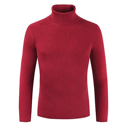 FRAUIT Herren Herbst Winter Rollkragen Langarm Pullover Männer Slim Strickjacke Cardigan Sweater mit Stehkragen aus Hochwertiger Baumwollmischung Sweatshirt Hemd Shirt Top Bluse -