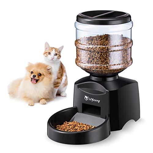 Isyoung alimentatore automatico 5.5 l alimenti per animali domestici cani e gatti alimentatore elettronico alimentatore per animali domestici con ampio display lcd e registratore vocale