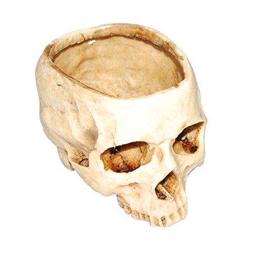 Testa Cranio Contenitore Vaso Di Disegno Del Fiore Fioriera Replica Arredamento Bar A Casa