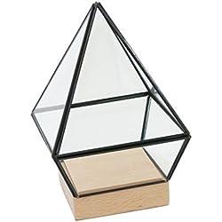 Terrario geométrico, Caja de Cristal Maceta para decorar mesa de centro