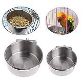 2 Pezzi Tazze di Pappagallo per Uccelli Pappagallo IceEyen in Acciaio Inox Piatto per Alimenti Alimentatore per Cockatiel conuri pappagallini parrocchetto Pappagallo