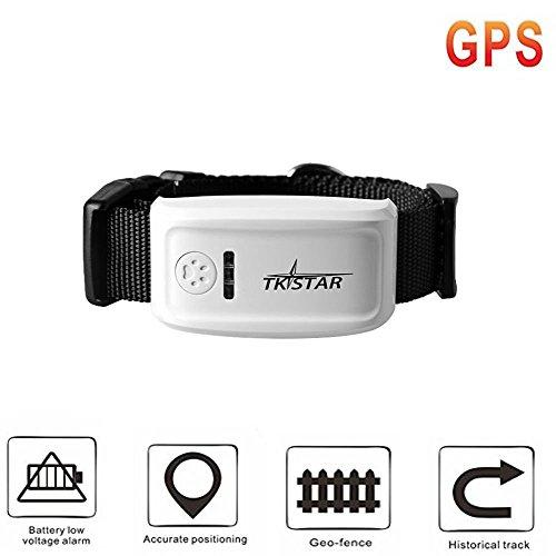 Tkstar Mini GPS/GSM/GPRS Tracker pour chien/animal domestique de grande qualité avec logiciel gratuit tk909