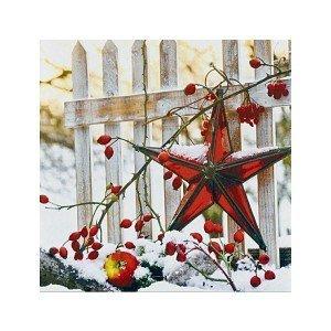 Serviette Star at Fence-Winter