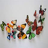 World Beauty's NoEnName_Null 12pcs Decal Wall Stickers Home Decorations 3D Butterfly Colorful Drop Shipping w30 Amazon Rs. 1083.00