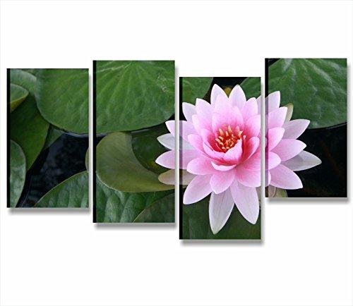 blume-lotus-2-modernes-bild-gerahmt-152-x-78-cm-druck-auf-leinwand-blumen-pink-flower-lotus-wellness
