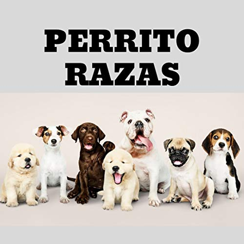 PERRITO RAZAS (Words Series nº 2) (Spanish Edition) -