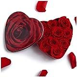 Rosenherz unvergängliche Rosen haltbar 3 Jahre Blumengeschenk für Damen Blumengesteck/Verlobung / Heiratsantrag von ROSEMARIE SCHULZ (Klein, Rot)