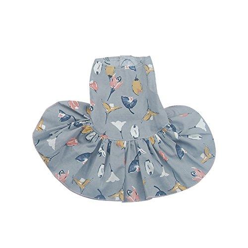 Haustier Kleid,Haustier-Morgen-Ruhm-Druckrock,Teddybär Niedliche Hündchen-Kleidung,Haustier Hund Kleid Welpen