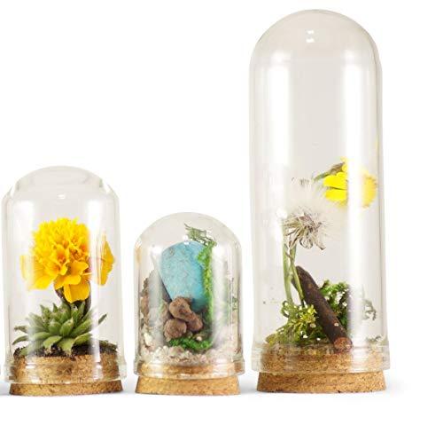 ❤️HobbyHerz 3 x Verschiedene Mini-GlasKuppeln/Mini Glasbehälter/Container/Flaschen/Glasflaschen mit Korken (3 x Kuppel)