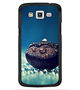 PRINTSWAG PHOTOGRAPHY Designer Back Cover Case for SAMSUNG GALAXY GRAND 2