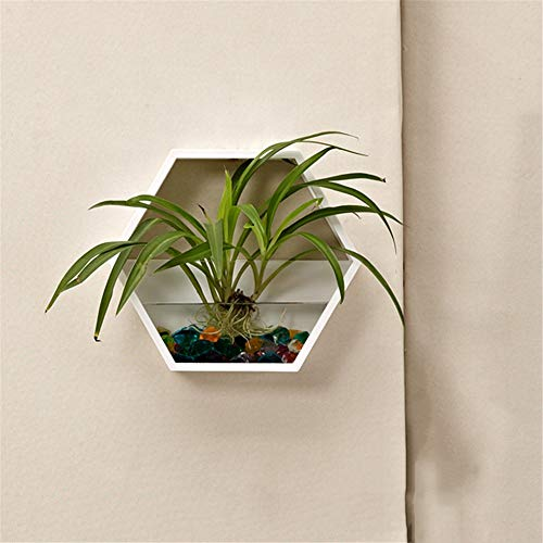 Hukangyu1231 vaso per piante a muro design fioriera sospesa in ceramica - piccola fioriera decorativa geometrica sospesa, fioriera acrilica per interni ed esterni (bianca/nera) (colore : bianca)