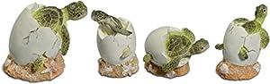 Katerina Prestige-Figura recinto de 4Bebes Tortugas Eclosion sobre Coral, me0915
