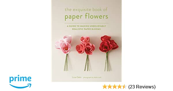 Exquisite book of paper flowers a guide to making unbelievably exquisite book of paper flowers a guide to making unbelievably realistic paper blooms amazon livia cetti 9781617691003 books mightylinksfo