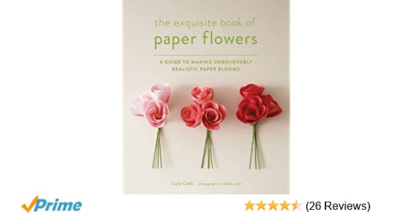 Exquisite Book Of Paper Flowers A Guide To Making Unbelievably