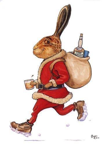 Karte Weihnachten Motiv Hase Haarverdichter braun Hase dressed as Santa von den ikonischen sporting country sports Künstler Bryn Parry