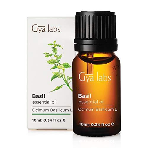 Basilikum-ätherisches Öl - Eine revitalisierende Reinigung für gesünderes Haar und erneuerten Fokus (10 ml) - 100% reines Basilikumöl in therapeutischer Qualität -