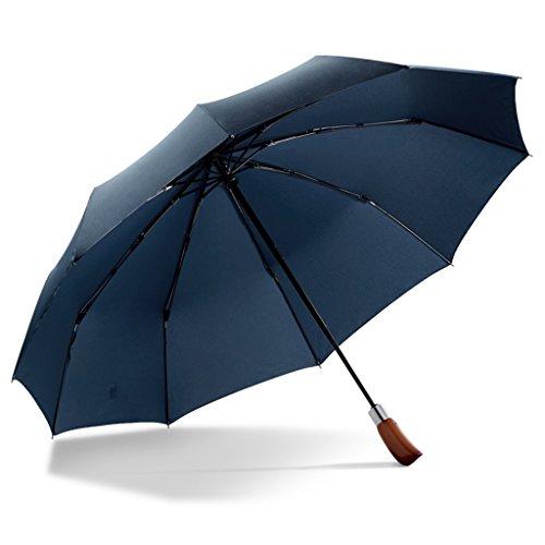 Unbekannt &Regenschirm Falten Vollautomatischer Offener Klassischer Regenschirm-Doppelt-Überdachungs-Ventilation Windproof Hölzerner Regenschirm (Farbe : B) (Ventilation Lange)