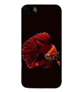 printtech Unique Fish Back Case Cover for Apple iPhone 5C