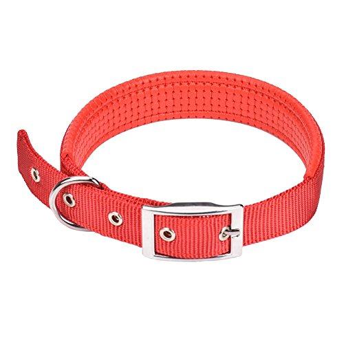 CtopoGo Comfy Hundehalsband Einstellbare Hundehalsband mit einfacher Schnalle Strong Nylon gepolstert Puppy Dog Hundehalsband für kleine / mittlere / große Hunde, Hals 12