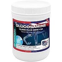 Equine America 204-UK Glucosamine HCI 12,000 with MSM & HA 1KG (Now 25% Stronger)