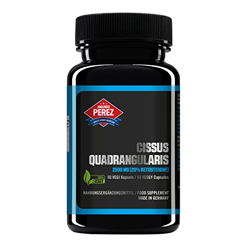 Cissus Quadrangularis Extrakt 2500 mg - 20% Ketosterone (90 vegane Kapseln)
