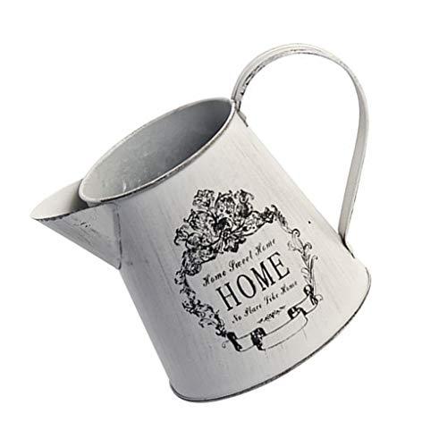 lumen-Metall Vase Hausgarten-Eisen-Blumen-Bewässerungs-Garten Tin Wasser-Topf-Flasche ()
