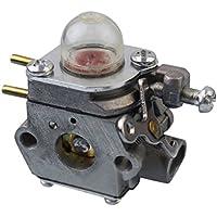 EBILUN WT-973 - Carburador de Coche para MTD Cadet Tipo para WT-973-1 WT973