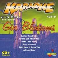 Karaoke Gin Blossoms