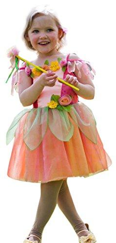 Halloweenia - Mädchen Feen Kleid mit Zauberstab Karneval Kostüm , Mehrfarbig, Größe 92-98, 2-3 Jahre