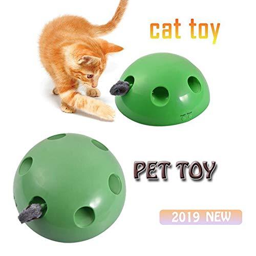 """Interaktives Katzenspielzeug, """"Fang die Maus"""" mit beweglicher Plüschmaus, Katze und Maus elektrisches Spielzeug, Federspielzeug für Katzen, Katzenspielzeug für Hauskatzen"""