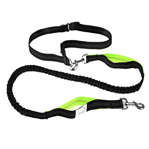 Lifepul Hands Free Running Dog Lead – Pet Dog Waist Leash Walking Belt, Dual Handle Running Leash, Reflective Strip In Adjustable for Running, Jogging or Walking, Hiking
