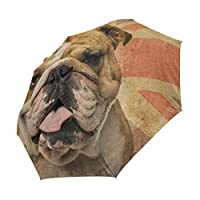 XiangHeFu Umbrella An English Bulldog Panting Auto Open Close 3 Folds Lightweight Anti-UV