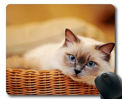 Gaming-Mauspad, Blaue Augen Pet Animal Cat Mauspad, Mauspad für Computer ()