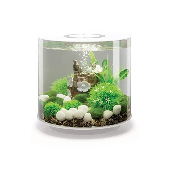 Pet's House OASE BIORB TUBE AQUARIUM FISH TANK MCR LED LIGHTING ALL IN ONE COMPLETE SETUP