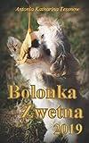 Bolonka Zwetna Terminplaner 2019: Kalender mit Feiertagen und Mondstand (Bolonka Zwetna Kalender, Band 3)