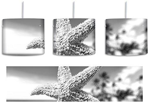 (Seestern im Sandstrand von Palm Beach Kunst B&W inkl. Lampenfassung E27, Lampe mit Motivdruck, tolle Deckenlampe, Hängelampe, Pendelleuchte - Durchmesser 30cm - Dekoration mit Licht ideal für Wohnzimmer, Kinderzimmer, Schlafzimmer)