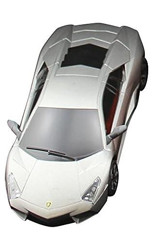 Ferngesteuertes Auto R/C Fahrzeug RC-Spielzeugauto mit Funk-Fernsteuerung MIT BELECUHTUNG - Maßstab: 1:24 Modell (LAMBORHINI-grau)