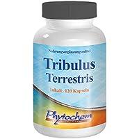 Tribulus Terrestris 1200 mg   Testosteronbooster für Muskelaufbau und Libido   120 Kapseln hochdosiert   Premium Qualität aus Deutschland