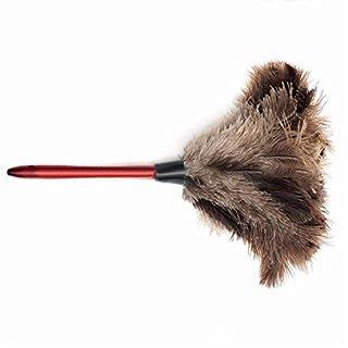 Ogquaton Plume de Nettoyage de qualité supérieure plumeau d'autruche plumeau d'autruche plumeau de Plumes Douces Photo Couleur