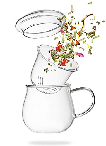Teeglas mit Sieb - Teetasse mit Glasfilter - 360ml Borosilikat Glass mit Filter - von Tea 108
