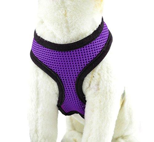YiJee Haustier Hund Sommer Bekleidung Sicher Kontrolle Hundegeschirr Welpen Vest Harness Lila M