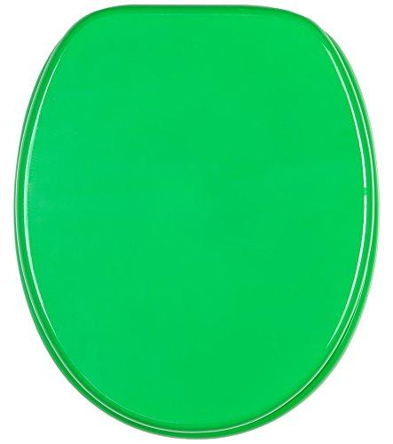 WC Sitz, hochwertige Oberfläche, einfache Montage, stabile Scharniere, Grün