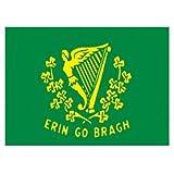 Irish Ireland Erin Go Bragh 5x3 Flag