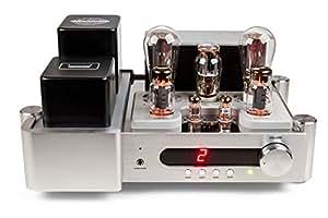 DestinY 300B mK2 amplificateur à tubes avec 300BS endröhren-b