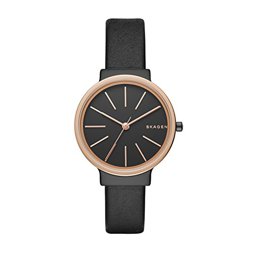 Skagen Women's Watch SKW2480
