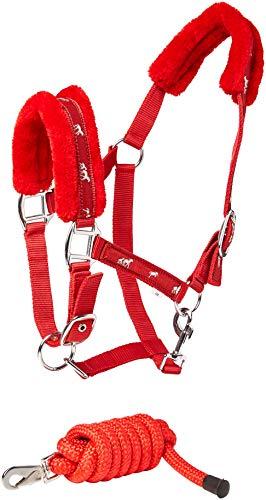 cwell Pferde New Equine Print Fell Gepolsterte Halfter Halfter + passende Leine Rot Verschiedene Größen (COB).