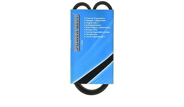 Mapco 250800 Keilrippenriemen Auto