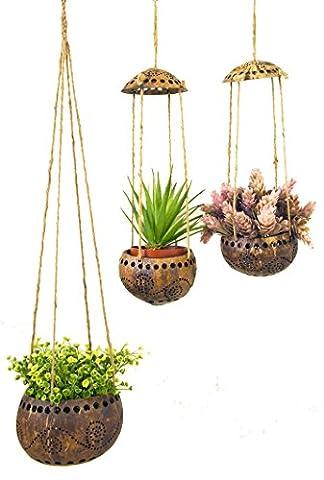 exotique Élégance Combinaison Lot de 3Décoration de jardin Coquille de noix de coco Pot de fleurs à suspendre (lot de 1pièce Taille M/2pieces Taille S).
